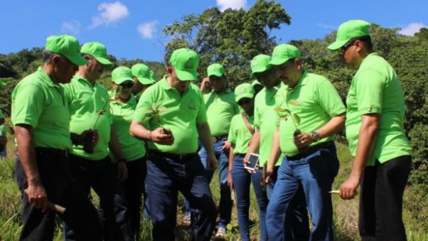 COOPINFA planta más de mil árboles en apoyo a campaña de preservación medioambiental